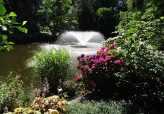 fontanna - ogród botaniczny we Wrocławiu