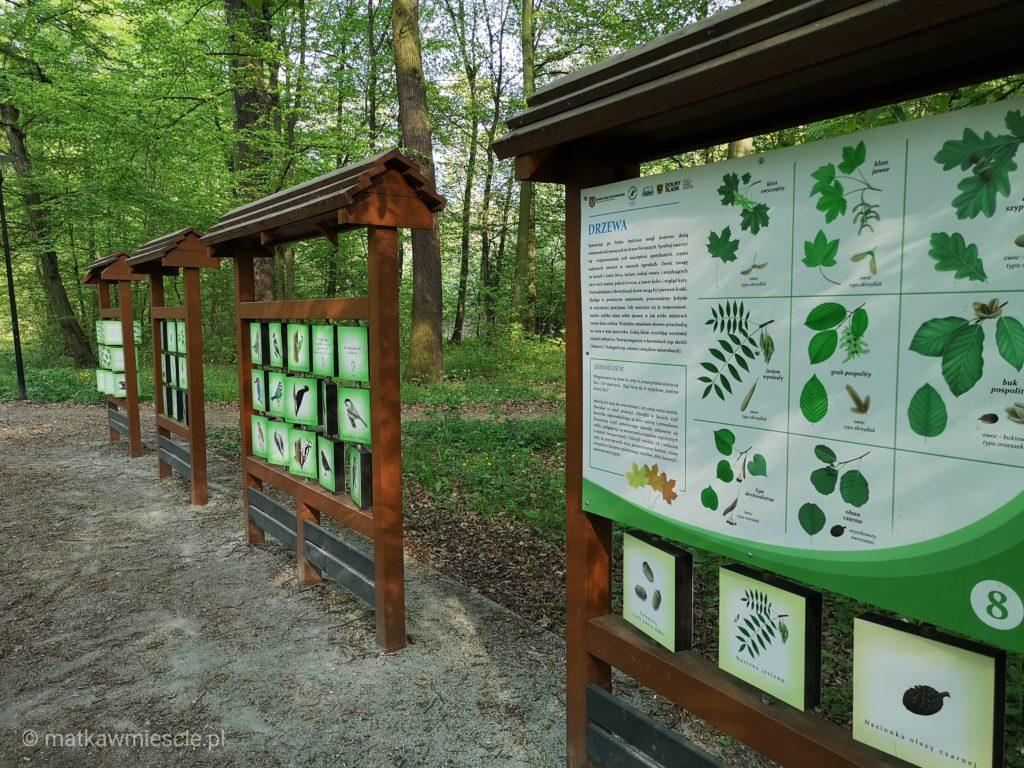 dolina-bystrzycy-tablice-drzewa