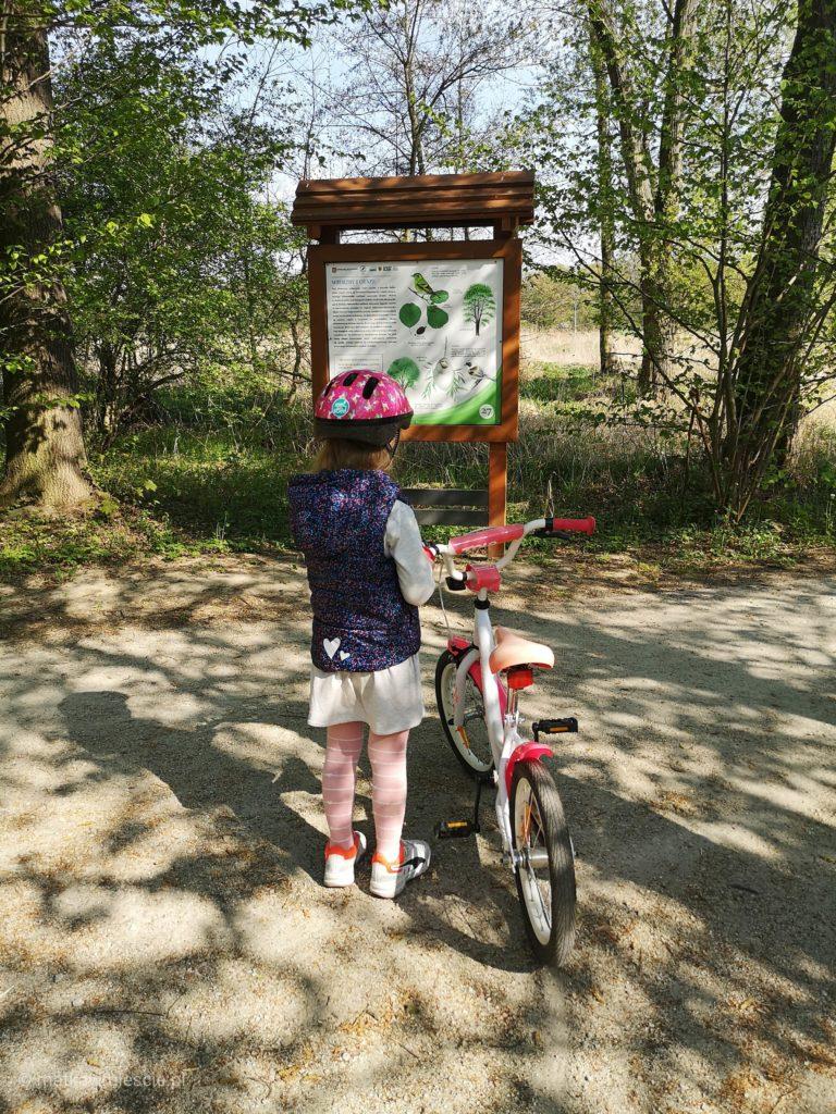 park-katy-wroclawskie-rower