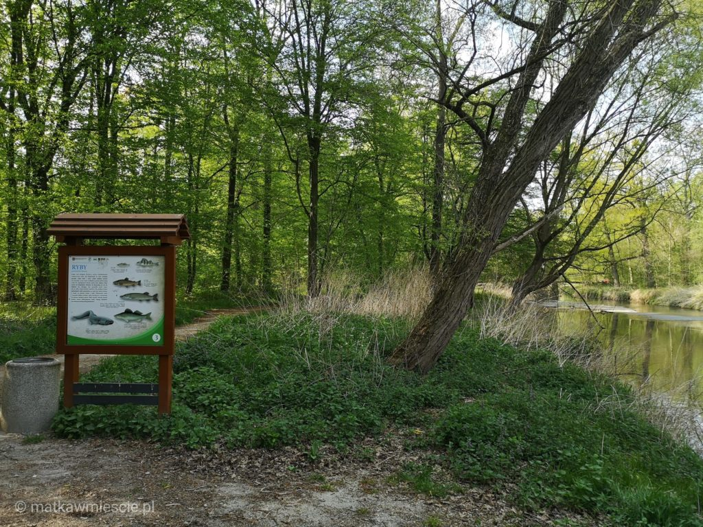 pk-dolina-bystrzycy-tablica-ryby