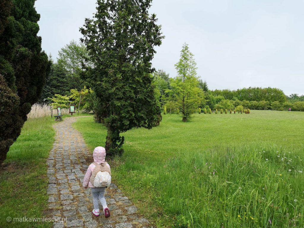 arboretum-lesne-sciezka
