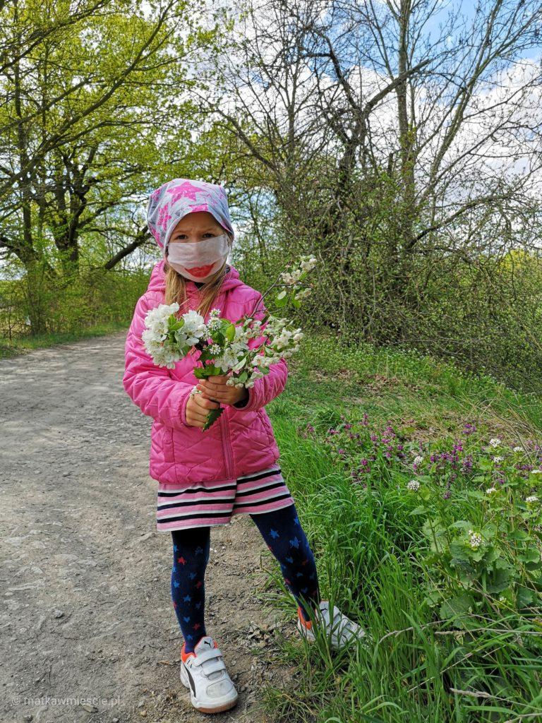 krobielowice-zbieranie-kwiatow