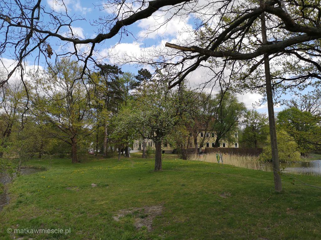 krobielowice-zamek-za-drzewami