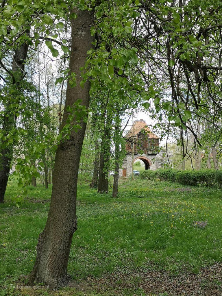 krobielowice-park