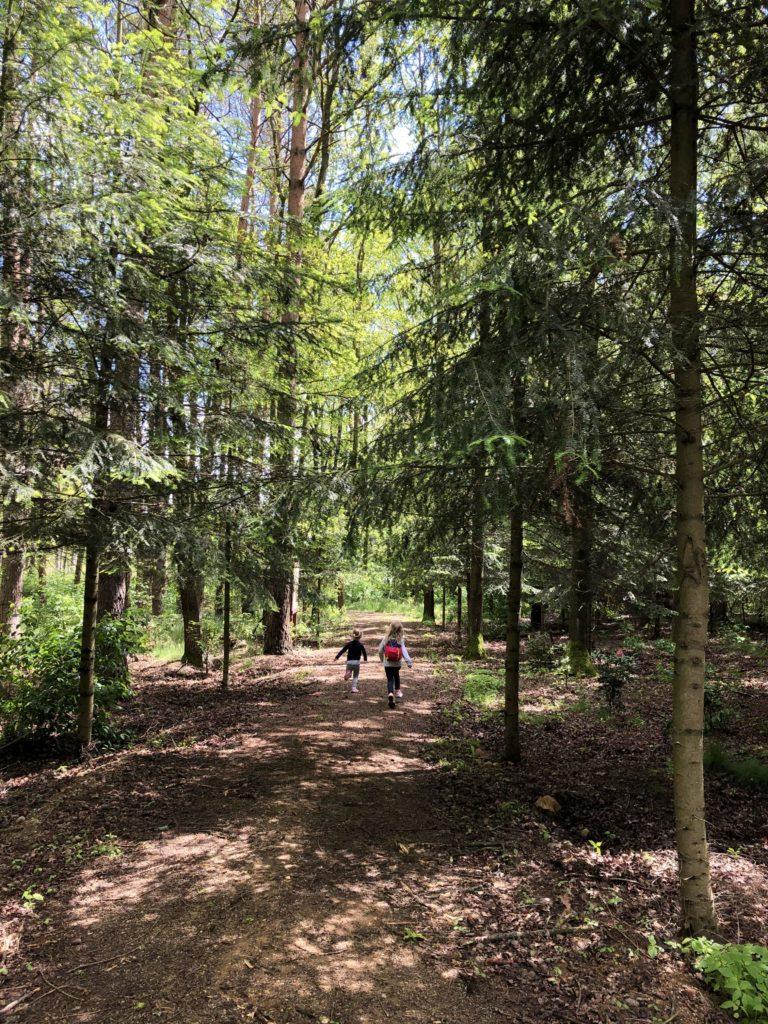 arboretum-lesne-stradomia