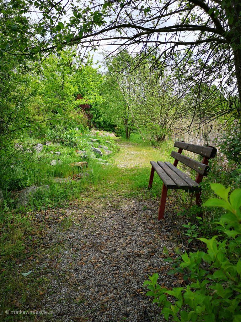 arboretum-lesne-w-stradomii