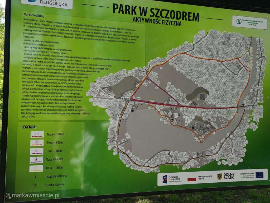 park-szczodre-aktywnosc-fizyczna