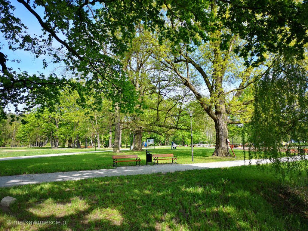 park-szczodre-zielen