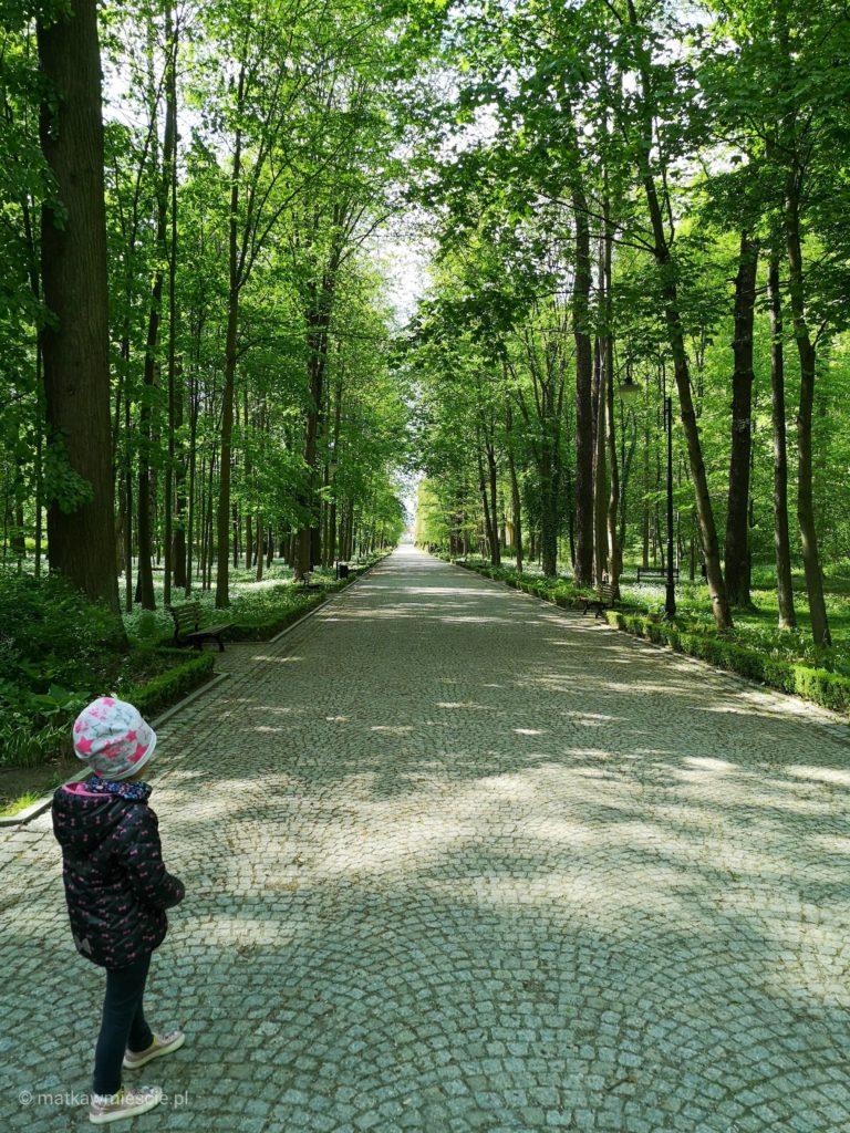 aleja-park-zdrojowy-kudowa-zdrój