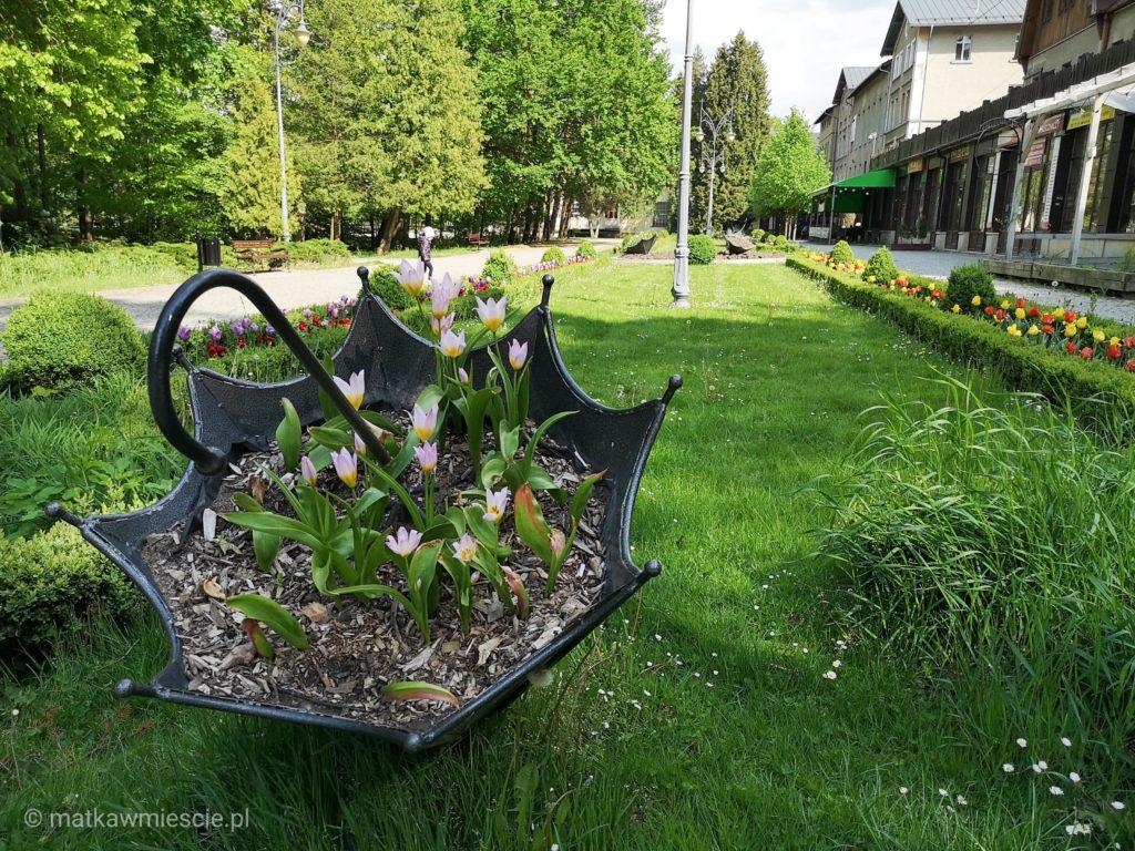 park-zdrojowy-kwiaty-parasol
