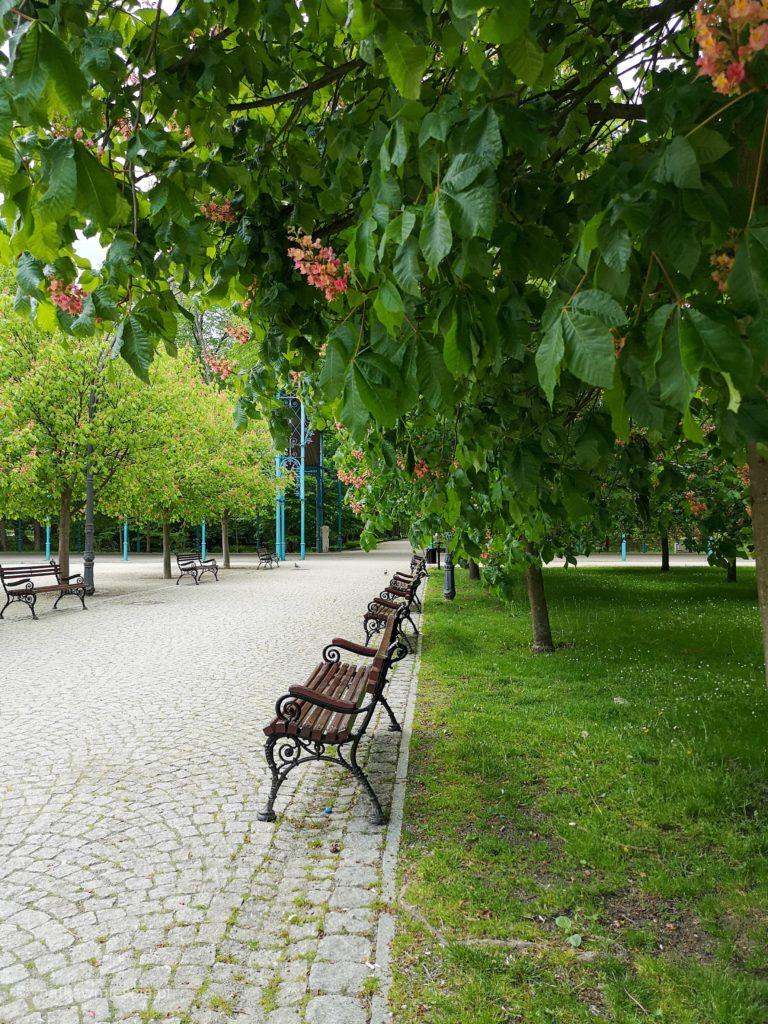 ławki-park-zdrojowy