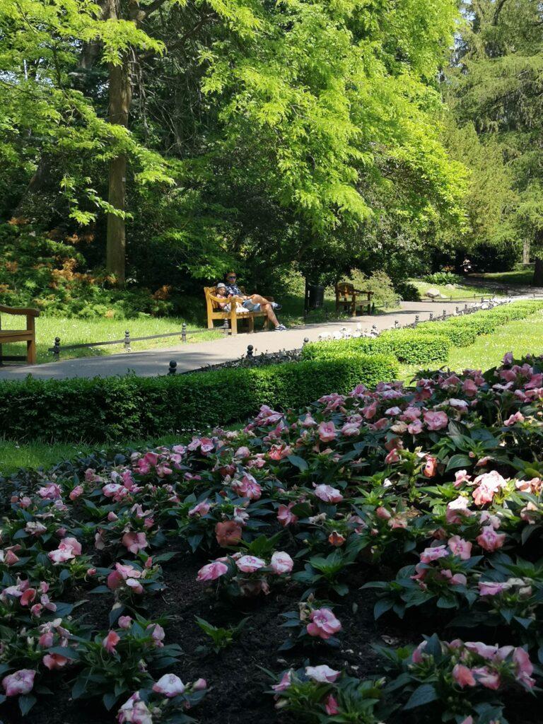 park-oliwski-na-laweczce
