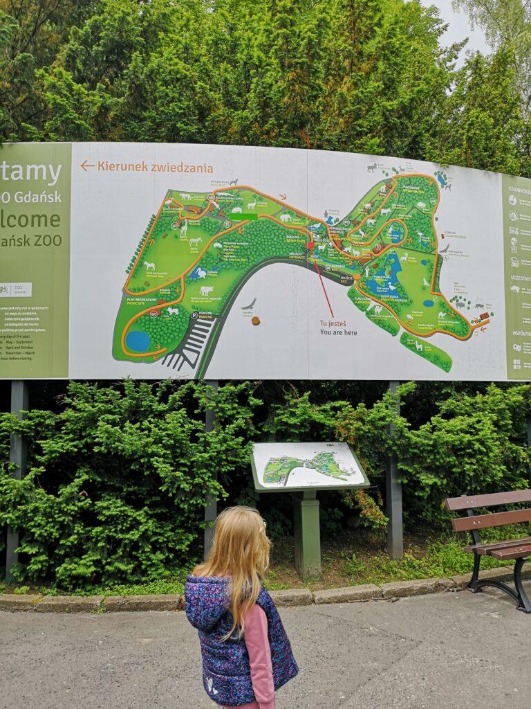 mapa-zoo-gdańsk