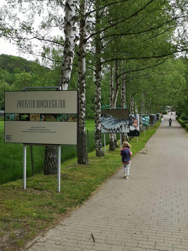 oliwskie-zoo