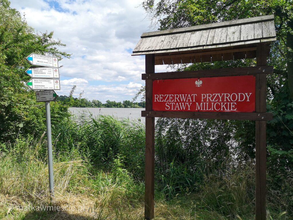 rezerwat-przyrody-stawy-milickie