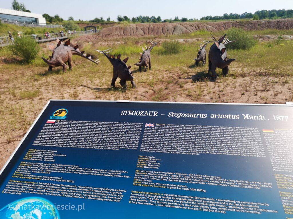 stegozaur-informacje
