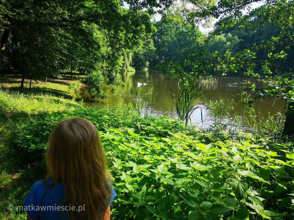 park-pawłowicki-staw