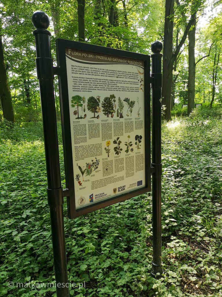 ścieżka-edukacyjna-w-parku