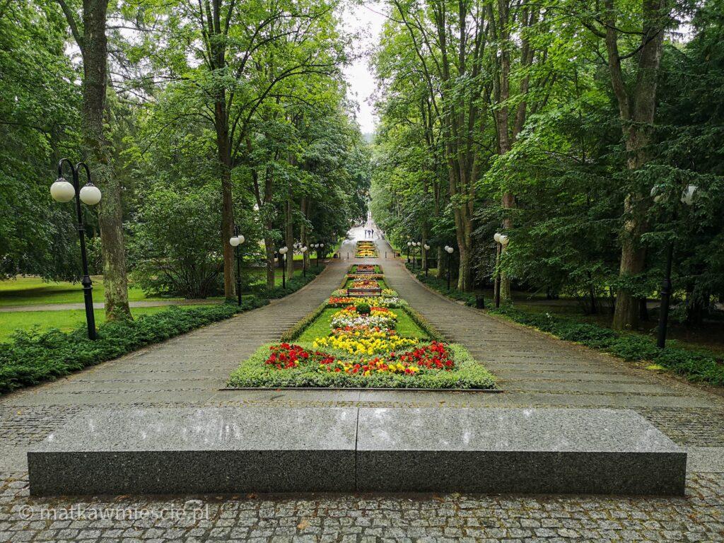 dywan-kwiatowy-park-zdrojowy