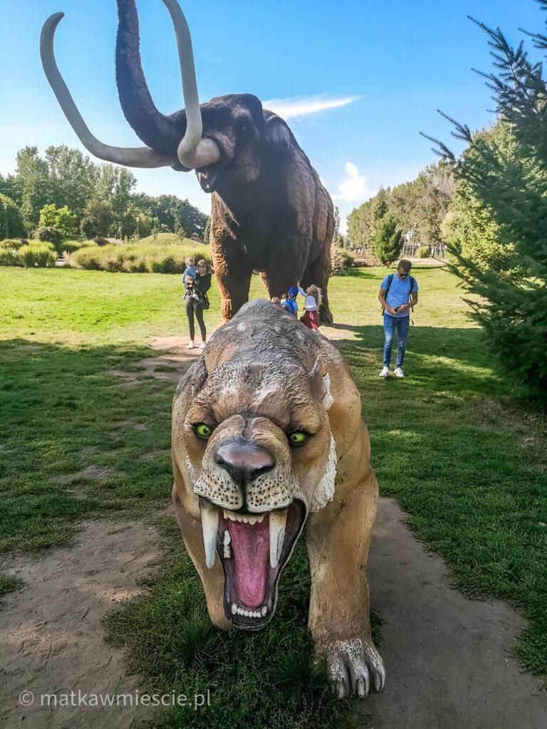 mamut-tygrys