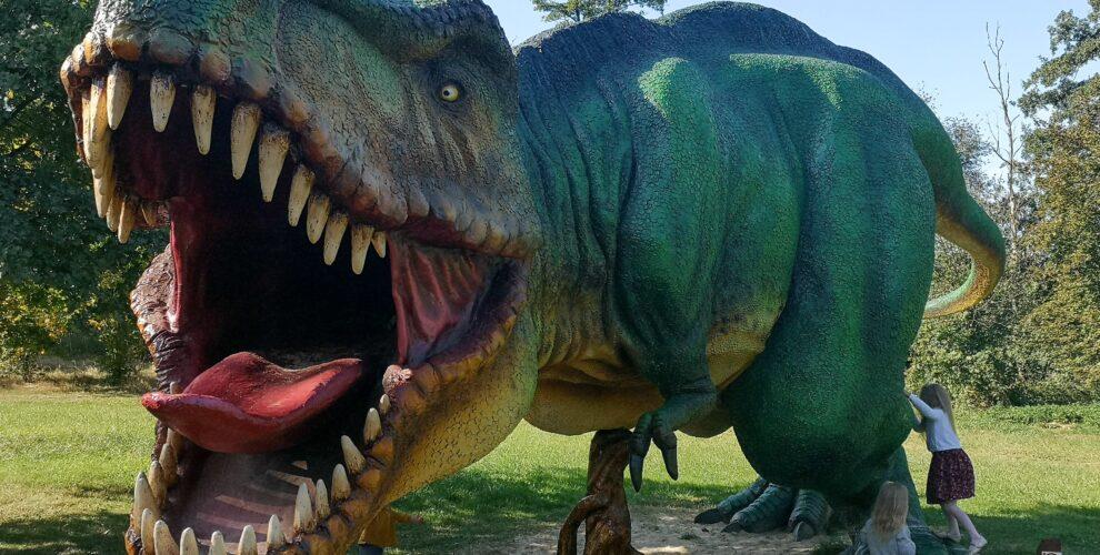 park-dinozaurów-t-rex