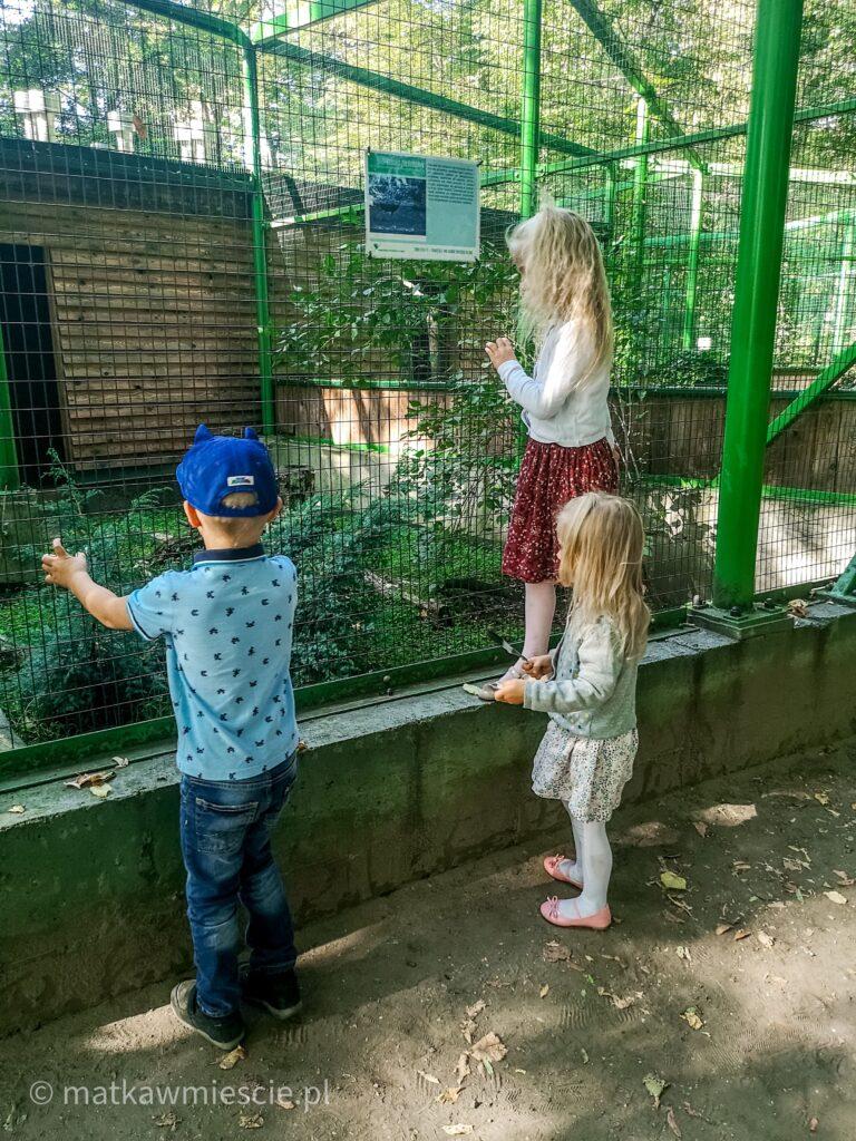 ptaszarnia-dzieci