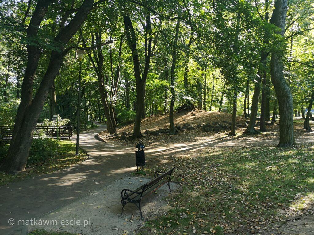 park-wrocławski-alejka
