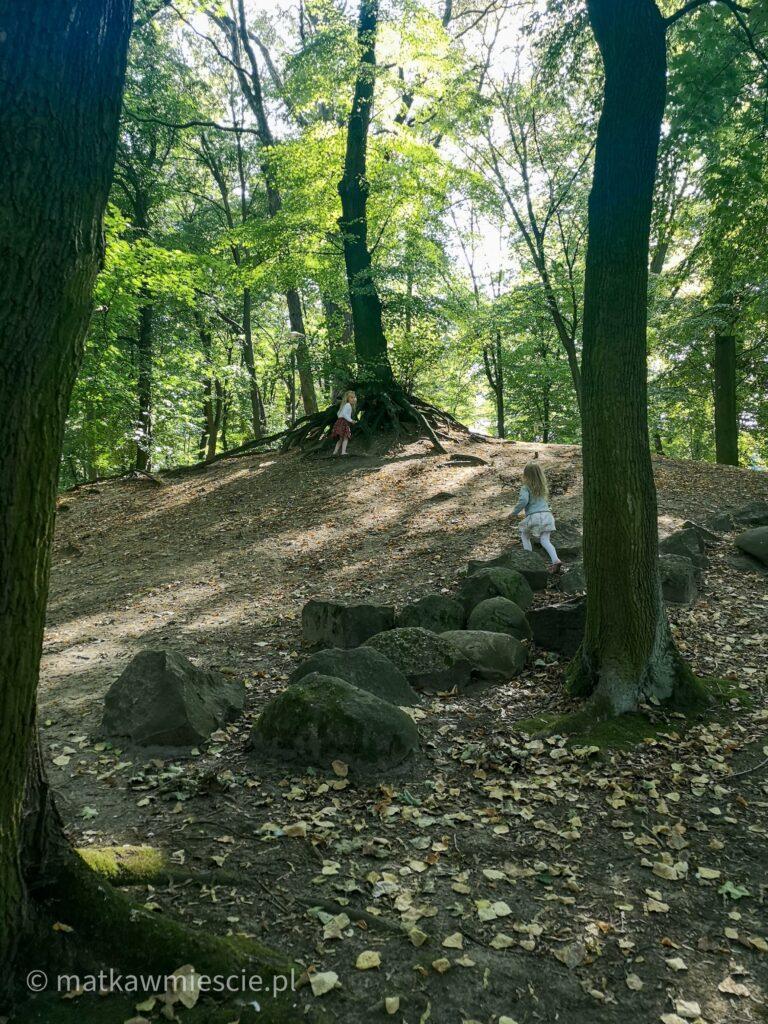 park-wrocławski-lubin
