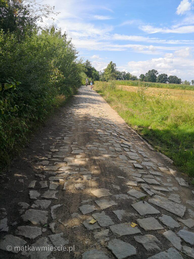droga-przez-pola