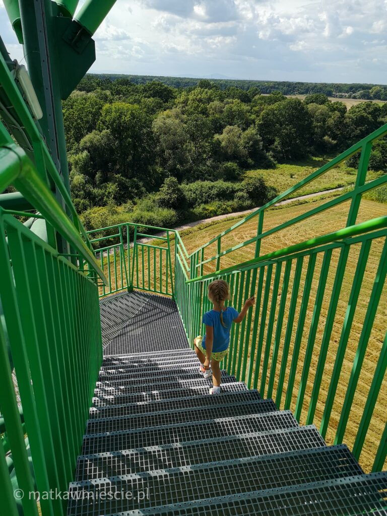 wieza-schody-w-dół
