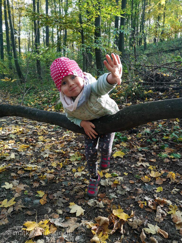 las-gałąź-dziecko