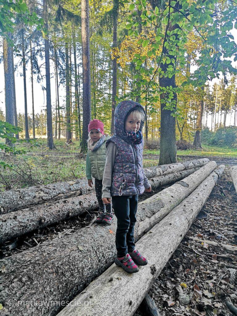 dzieci-ściete-drzewa