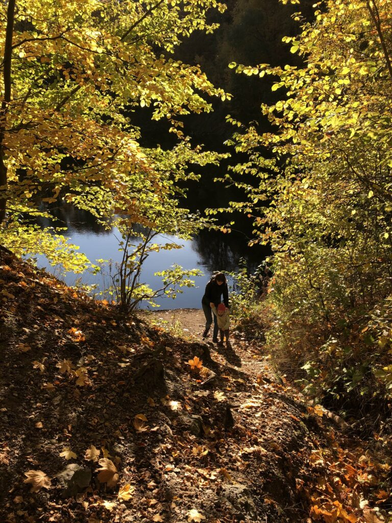jeziorko-daisy-jesień