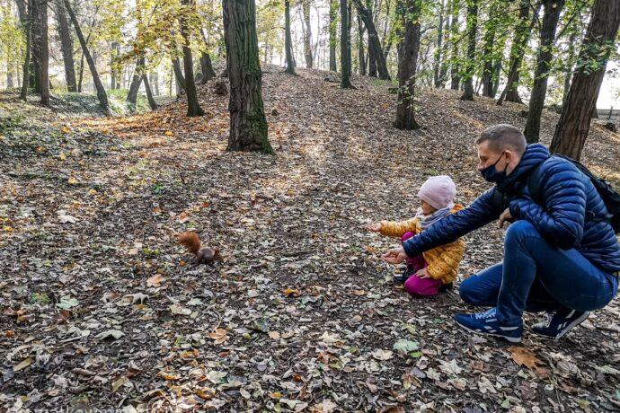 karmienie-wiewiórki
