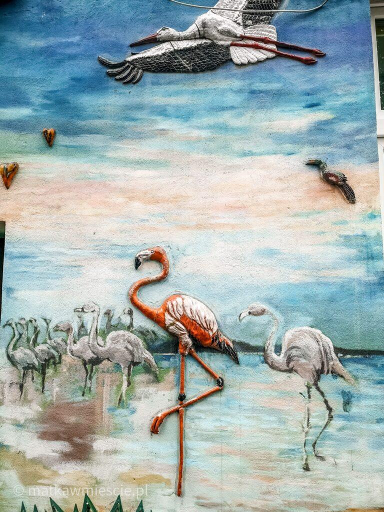 flamingi-kolorowe-podwórka