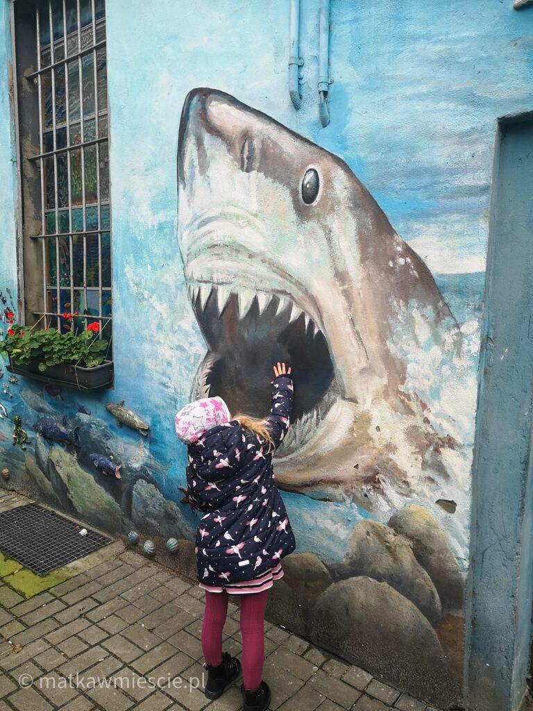 rekin-mural-wrocław
