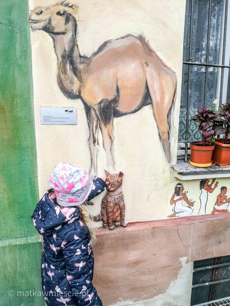 kot-wielbłąd-egipcjanie