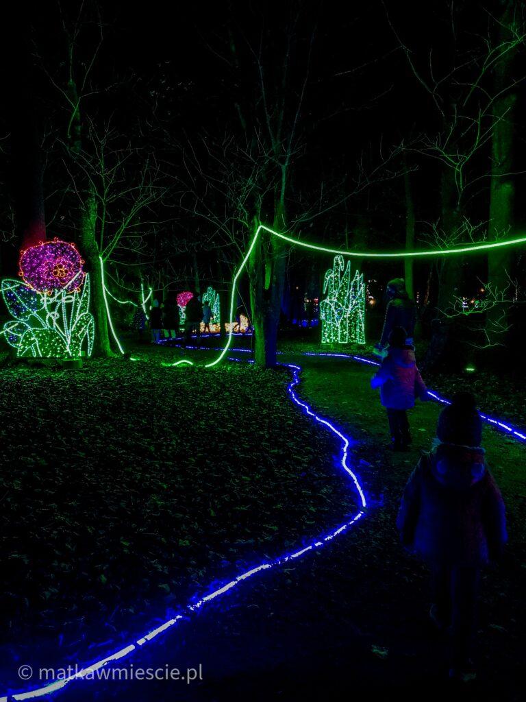 park-iluminacji