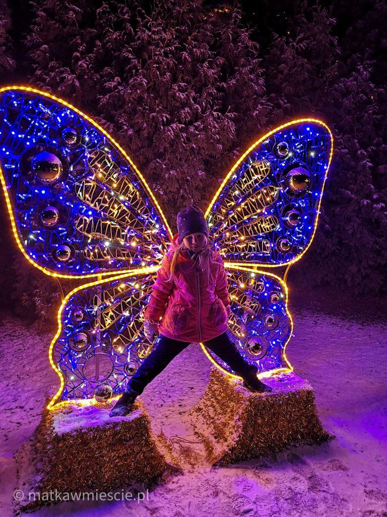 motyl-ogrody-swiatel