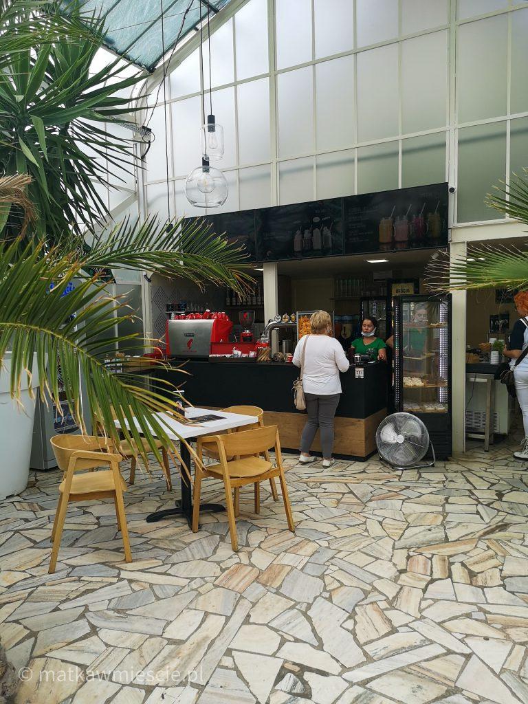 kawiarnia-palmiarnia