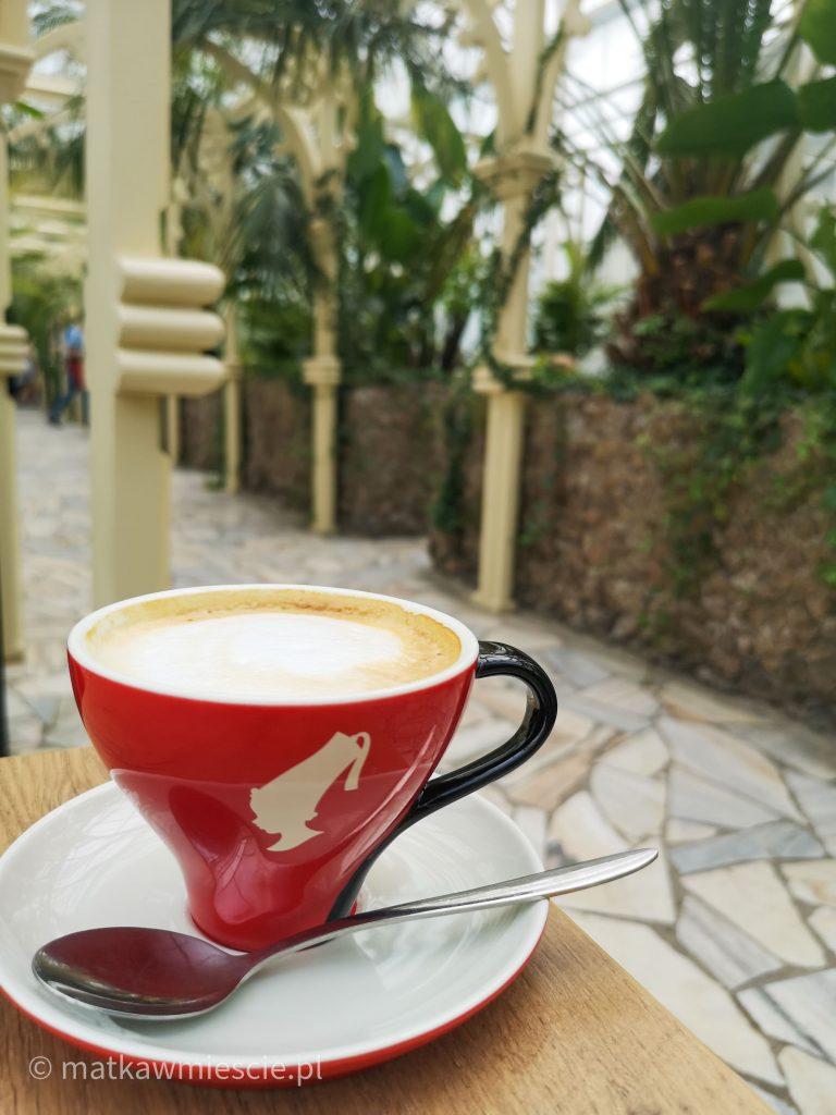 kawiarnia-pod-palmami-wałbrzych