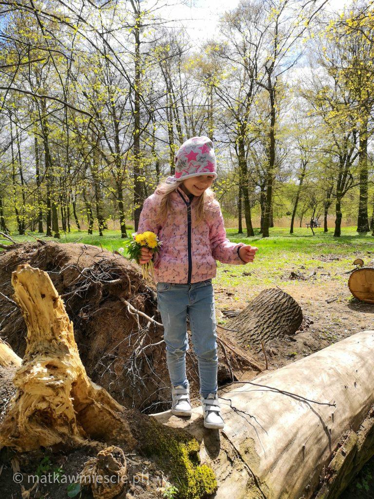 park-wschodni-dziecko-pień-drzewa