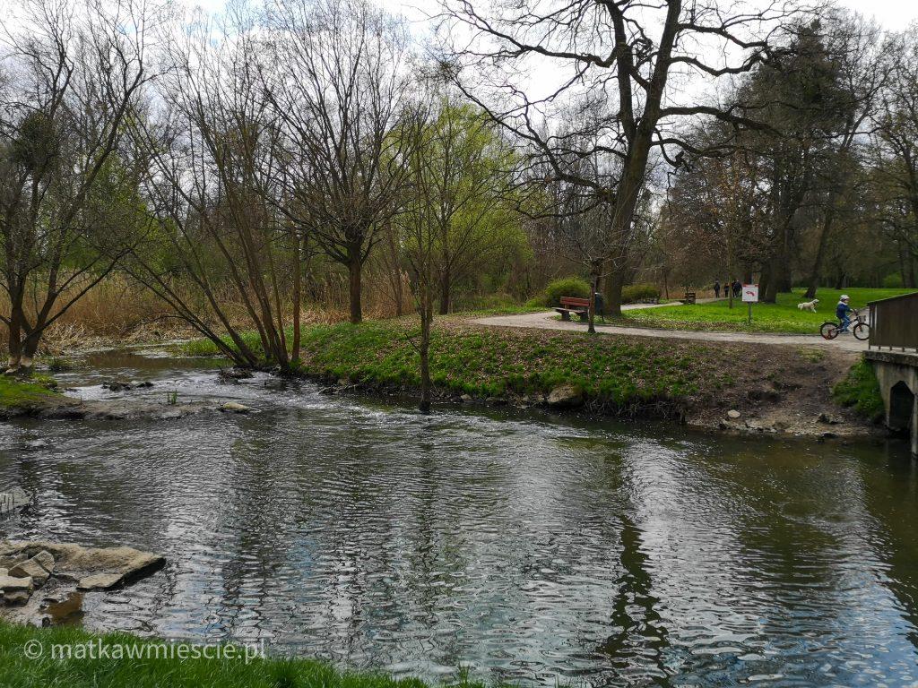 rzeka-park-wschodni-wrocław