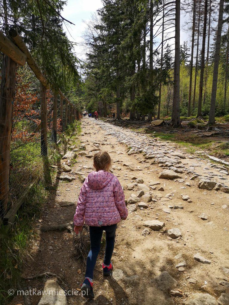 droga-na-wodospad-kamieńczyka
