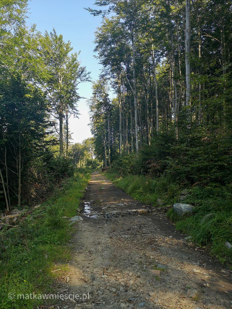 ślęża-przełęcz-tąpadła-szlak-niebieski