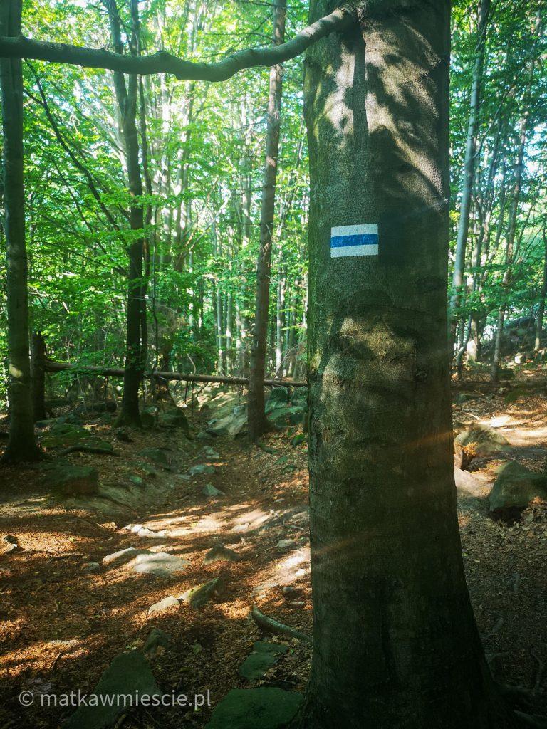 oznaczenie-niebieskiego-szlaku