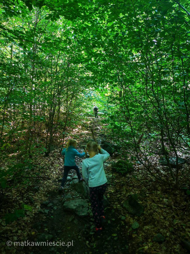 dzieci-las-szlak-na-ślężę