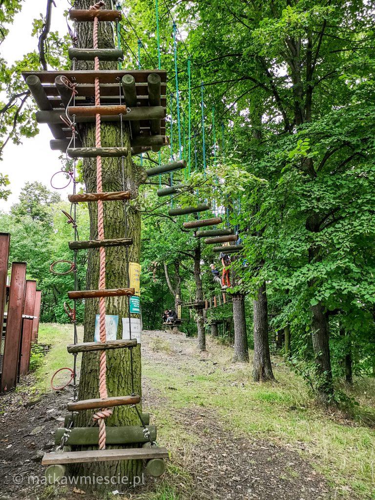 park-linowy-wieżyca-trasa-średnia