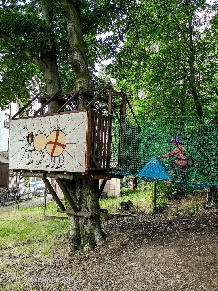 park-linowy-pajęcza-sieć