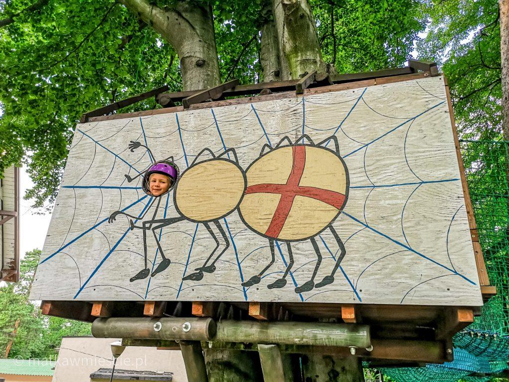 pająk-park-linowy